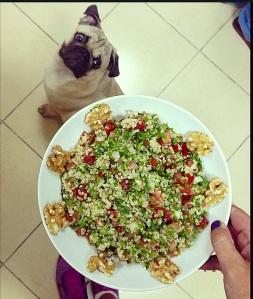 quinoa tabb