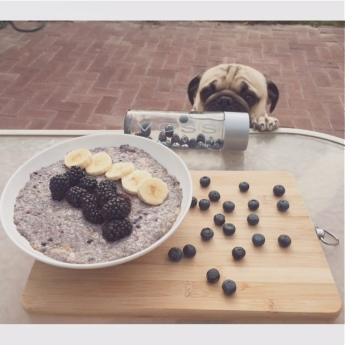 breakfast chia